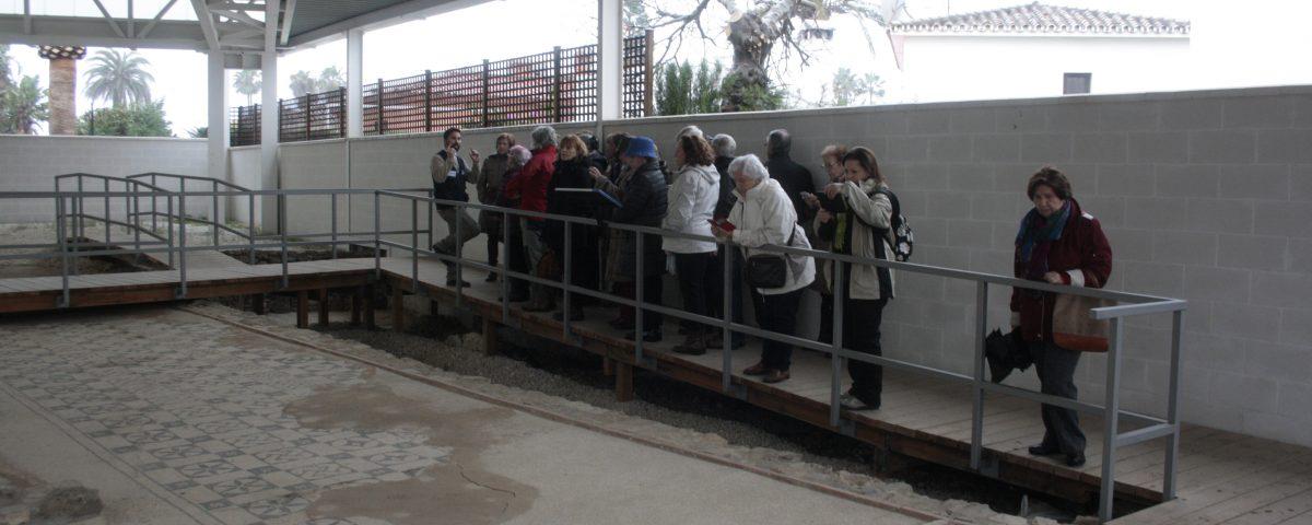 Visita guiada en Río Verde